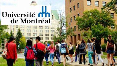 University of Ottawa Scholarships for International ...